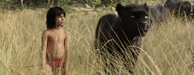 The Jungle Book - Bild 2 von 31