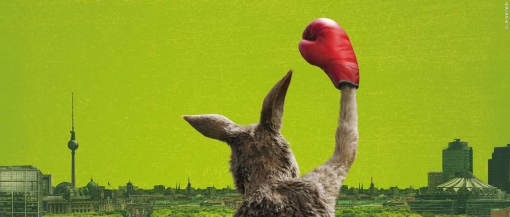 Die Känguru-Chroniken: Kino Start-Termin steht fest