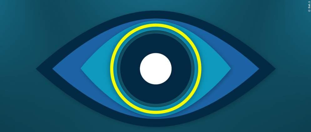 Big Brother: alle Kanäle zur Sendung