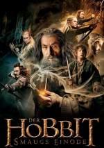 Der Hobbit 2 - Smaugs Einöde