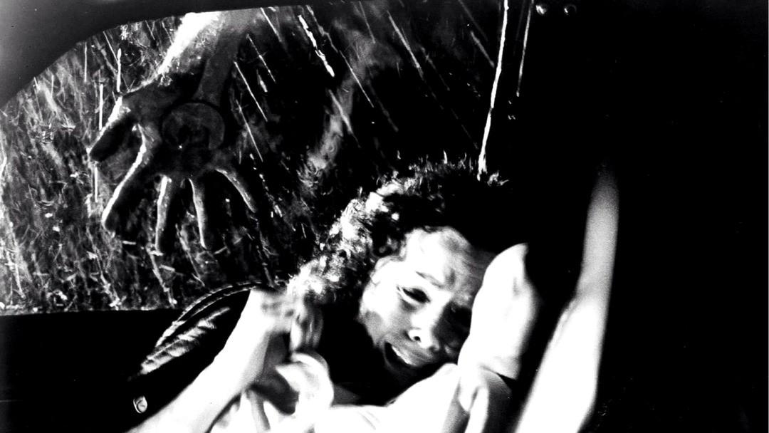 Halloween - Die Nacht Des Grauens - Bild 22 von 34