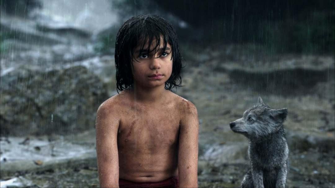 The Jungle Book - Bild 16 von 31
