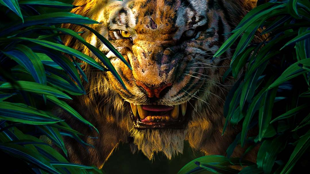 The Jungle Book - Bild 18 von 31
