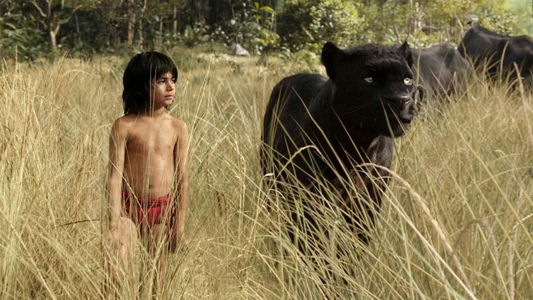 The Jungle Book - Bild 21 von 31