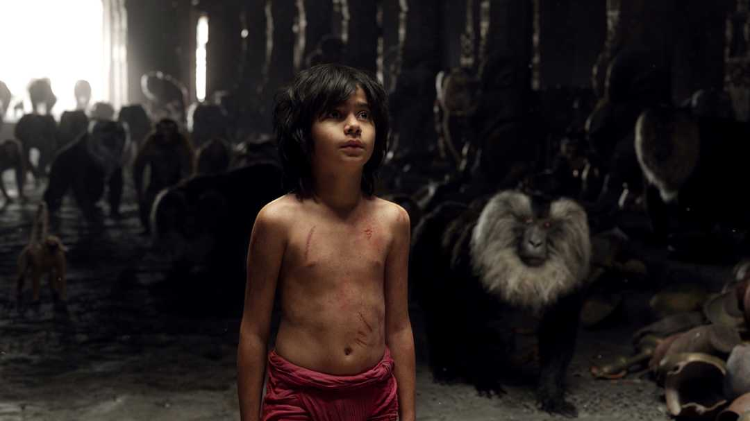The Jungle Book - Bild 30 von 31