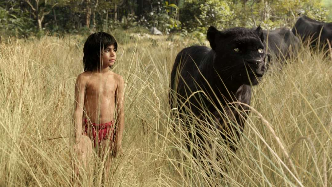 The Jungle Book - Bild 8 von 31