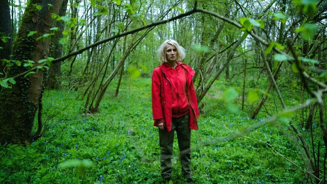 Bild zu Hunted - Waldsterben